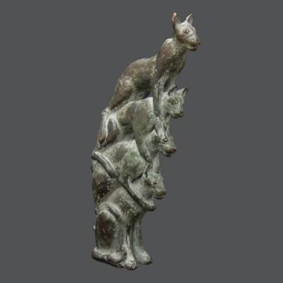 Colonne de chats abyssins