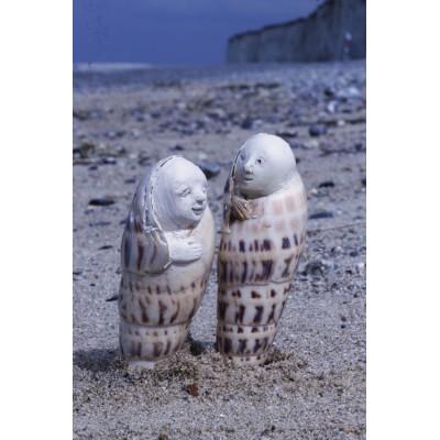Couple de coquillages